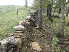 Kansas Walls